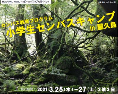 小学生センバスキャンプin屋久島開催のお知らせ!